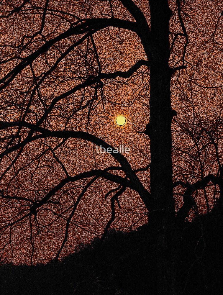 Moon Dance by Terri~Lynn Bealle