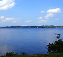 The Blue --es! of Kentucky Lake! by Ruth Lambert