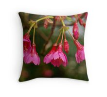 Promise of Spring II Throw Pillow