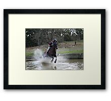 Equine power Framed Print