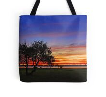 Tree At Dusk  Tote Bag