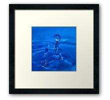 The Dolphin and The Ball Framed Print