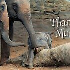 Thanks Mum by Antoine de Paauw