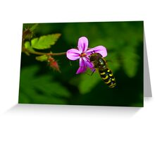 Hoverfly #1 Greeting Card