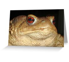 Close Up Portrait of A Common Toad Greeting Card