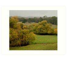 Autumn Rain, Otway Ranges,Forrest,Victoria Art Print