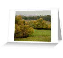 Autumn Rain, Otway Ranges,Forrest,Victoria Greeting Card