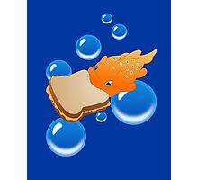 Pudge the Fish Photographic Print
