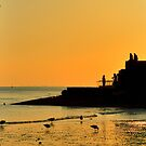 Sunset Silhouette - Brighton - England by Bryan Freeman