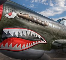 Curtiss P-40 Kittyhawk by Rod Kashubin