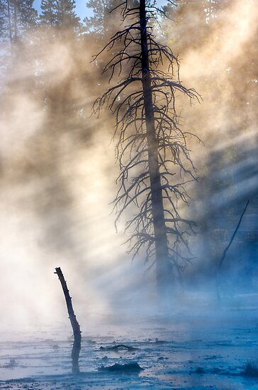 Fountain Paintpots, Yellowstone National Park, USA. by photosecosse /barbara jones