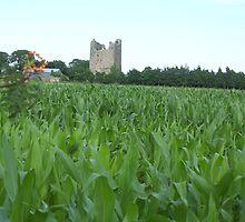 """Corn & Castle""Cahir Co.Tipperary Ireland.[view large] by Pat Duggan"