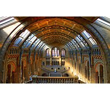 Natural History Museum - London Photographic Print