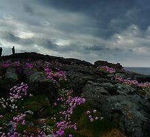 The Burren, Ireland by Tamara Travers