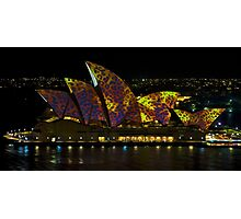 The Leopard - Sydney Opera House - Australia Photographic Print