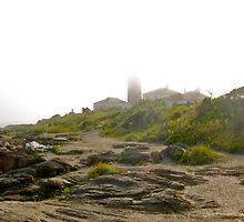 Conanicut Island Series - Beavertail Lighthouse - 2009.07.28 by Jack McCabe