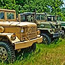 Three Abandoned Army Trucks by georgiaart1974