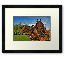 Are you talking about me....? Framed Print