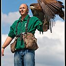 Has anyone see where my golden eagle went? by Shaun Whiteman