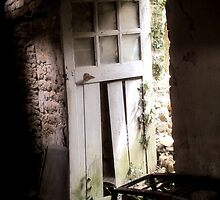 Inside Outside - Doorway of Yesterday! by Pamela Jayne Smith