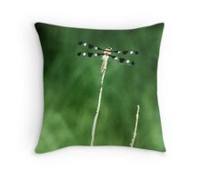 52891-10   DRAGONFLY #1 Throw Pillow
