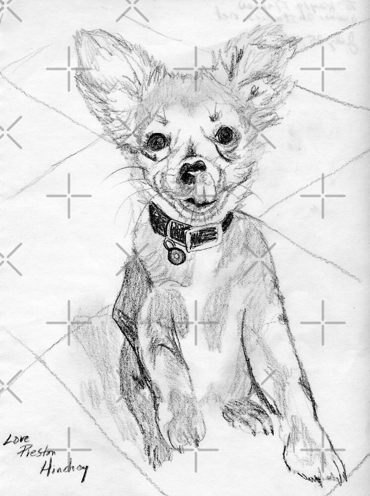 Papillon Pup by Linda Costello Hinchey