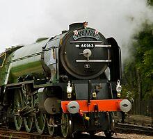 Tornado Peppercorn Class A1 60163 by Julie McBrien