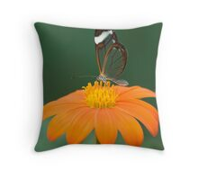 Glasswing Butterfly on Orange Daisy Throw Pillow