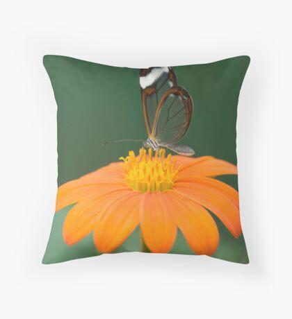 Glasswing Butterfly on Orange Daisy Throw Pillow