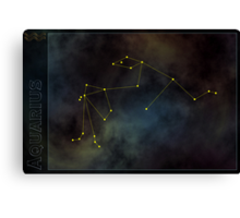 Aquarius zodiac Canvas Print