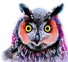 """Long eared owl"" by IsabelSalvador"