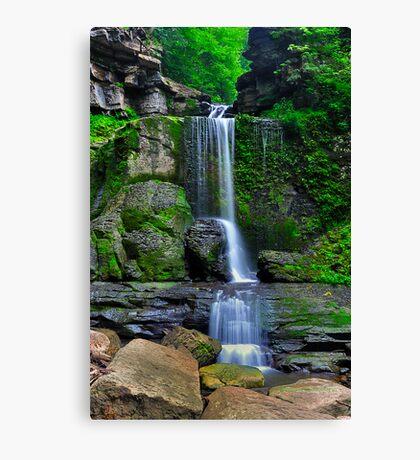 Filmore Glen State Park I Canvas Print