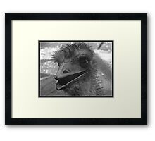 the great eye Framed Print
