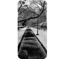 Snowblind (Colorless Section) iPhone Case/Skin