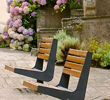Side by Side Benches by Buckwhite