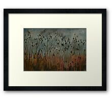 teasel field Framed Print