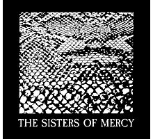 The Sisters Of Mercy - The Worlds End - Anaconda Photographic Print
