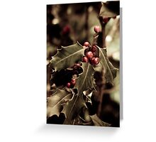 Holly bush with red berries III Greeting Card