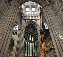 York Minster by Peter Hammer
