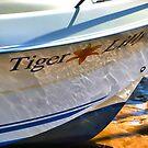 Tiger Lilly by lynn carter
