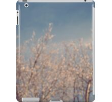 Cold February Mornings iPad Case/Skin