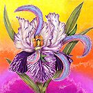 The Paisley Iris: psychedelic trippin' by Alma Lee