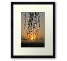 early morning curtain #2 Framed Print