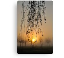 early morning curtain #2 Canvas Print