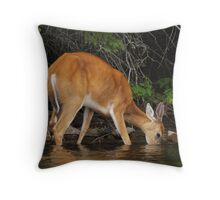Enjoying the Lake Throw Pillow