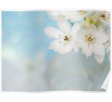 """""""Whispery White Flowers on Worn Linen"""" Poster"""