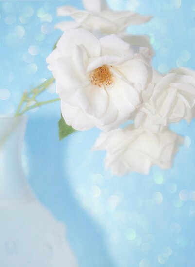 """""""Whispery White Roses on Blue"""" by Susan Gary"""