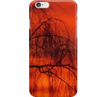 Willow over orange sky iPhone Case/Skin
