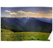 An Olympic Perspective - Olympic Mountains National Park, Washington Poster