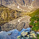 Alpine Stillness by Steven Pearce